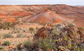 View from Deons Lookout Birdsville