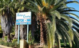 Welcome sigh to Mulga Country Motor Inn with big Palm Trees
