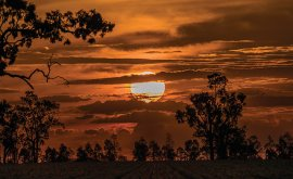 Windorah Sunset - gallery image